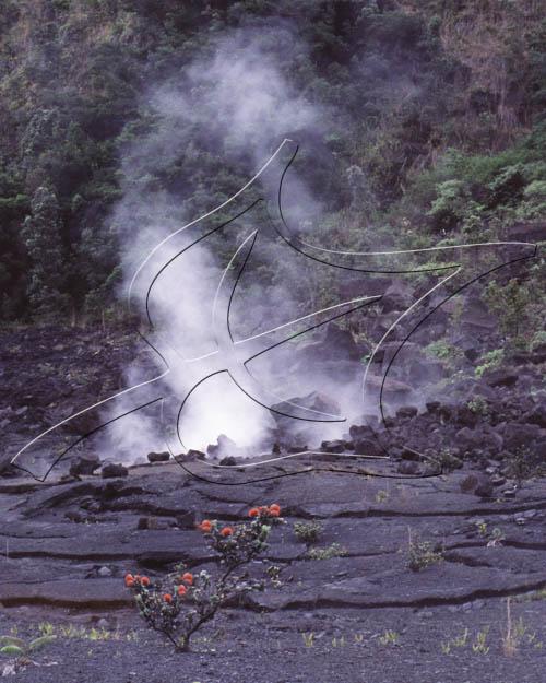 Lehua and the Volcano