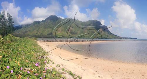 kahana-huiluafishpond-pohuehue-semipano.jpg