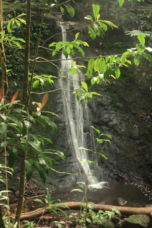 luaalaeafalls-lower-front.jpg