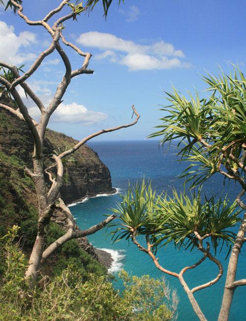 hanakapiai-hanakoa-coast.jpg