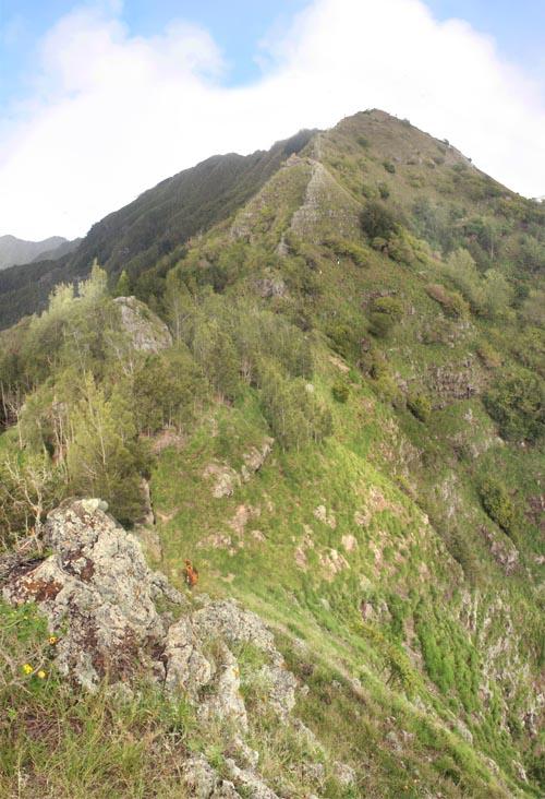 kamaileunu-saddle-ascent.jpg