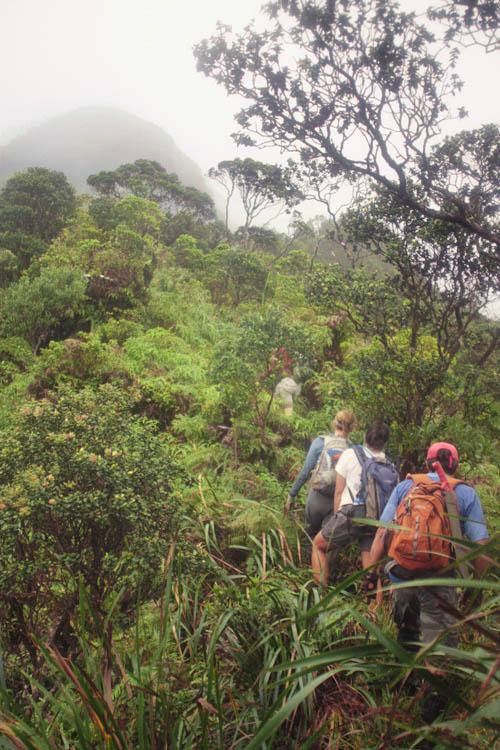 kahuauli-climb-clouds.jpg