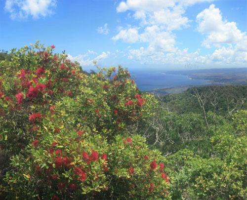 pahole-northshore-view.jpg