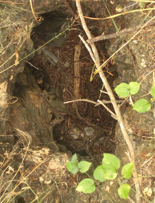 kalaeloa-sinkhole-3.jpg