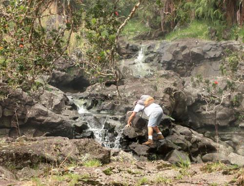 wailuku-ohia-waterfall-pete-climbing-cropped.jpg