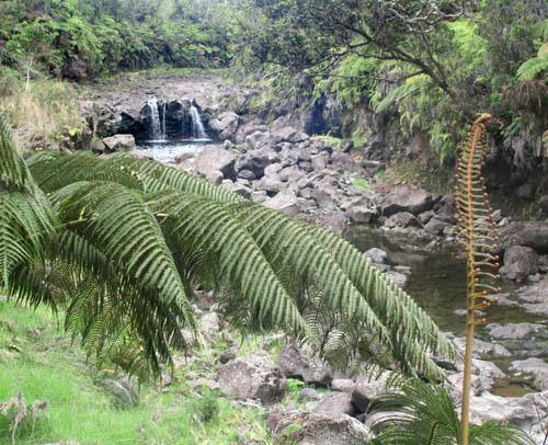 wailukuriver-waterfallspools.jpg