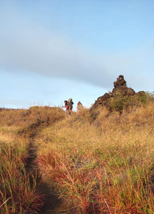 Keauhou-Trail-Grasslands-Sml
