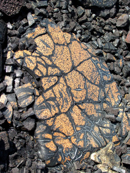 PunaCoastTrail-Brown-Black-Pahoehoe