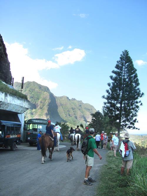 MooKapuOHaloa-Bunker-Buses-Horses-Sml