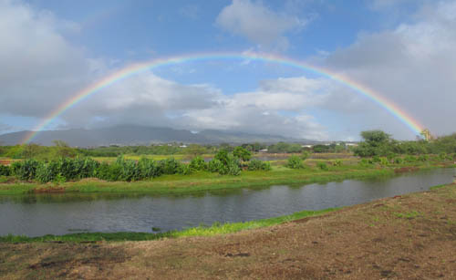 Rainbow Over Pouhala Marsh