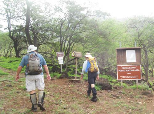 Clearing Ohikiloko Middle Ridge in the Rain