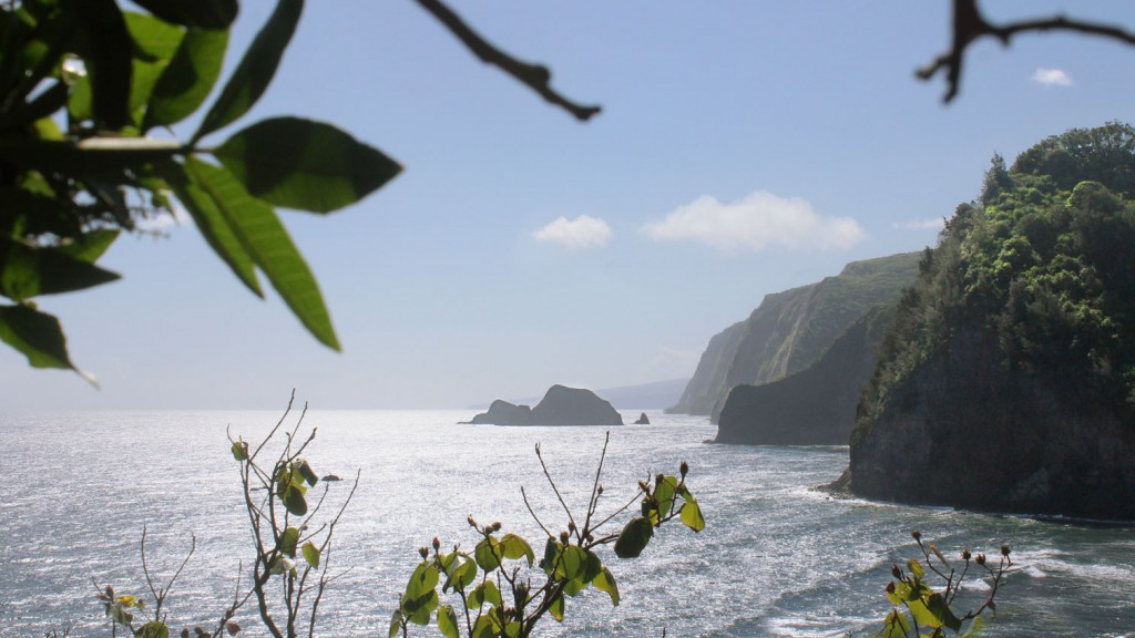 Pololū to Honokāne Nui on the Kohala Coast