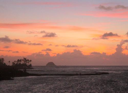 Clearing the Wailau Trail in East Molokai