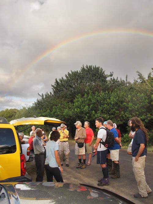 Clearing the Kawaiʻiki Trail
